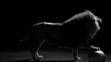 The Lion - Inside CHANEL