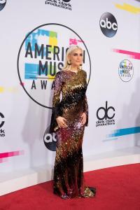 2017 AMERICAN MUSIC AWARDS - Red Carpet 21