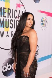 2017 AMERICAN MUSIC AWARDS - Red Carpet 43