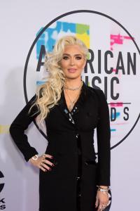 2017 AMERICAN MUSIC AWARDS - Red Carpet 47