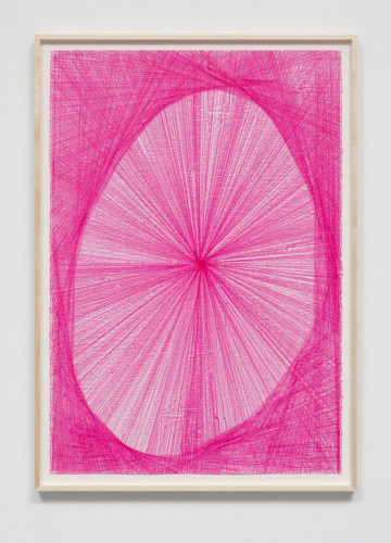 Matthew Chambers pink
