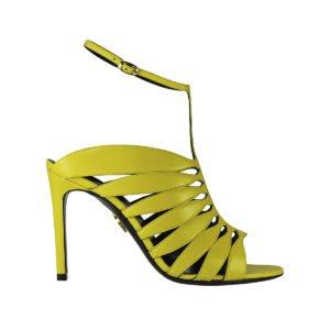 Jasmine yellow