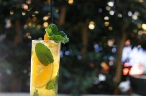 CITRUS AND PINEAPPLE MOJITO