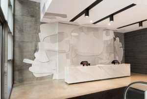 45 MuralSILVERSPOT CarolinaMUNOZ copy