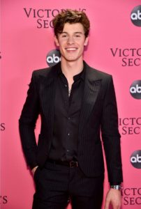 Shawn Mendes at the 2018 Victoria's Secret Fashion Show